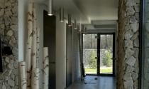 nowoczesny dom z brzozami i granitem